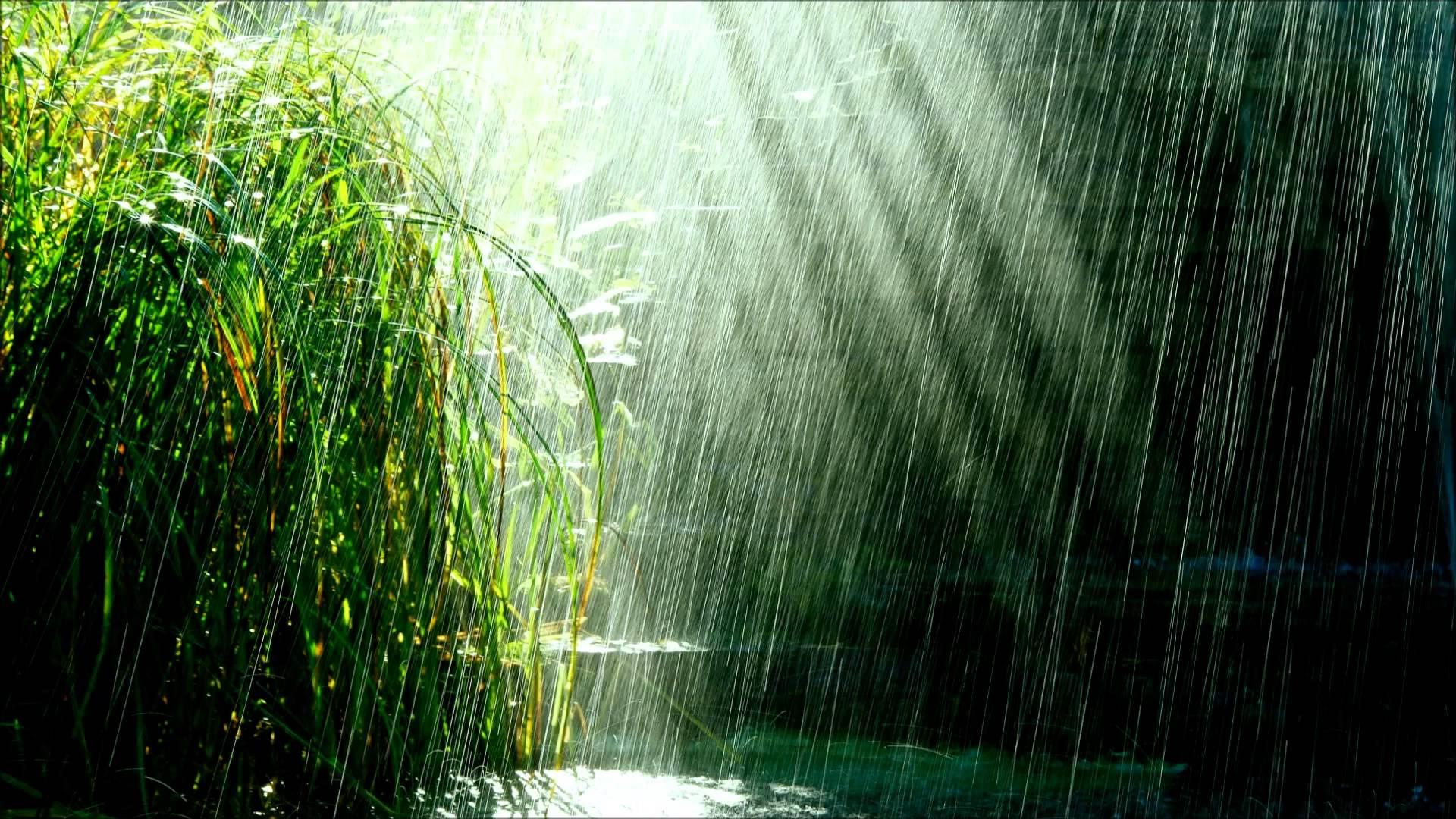 Rain Falling Background