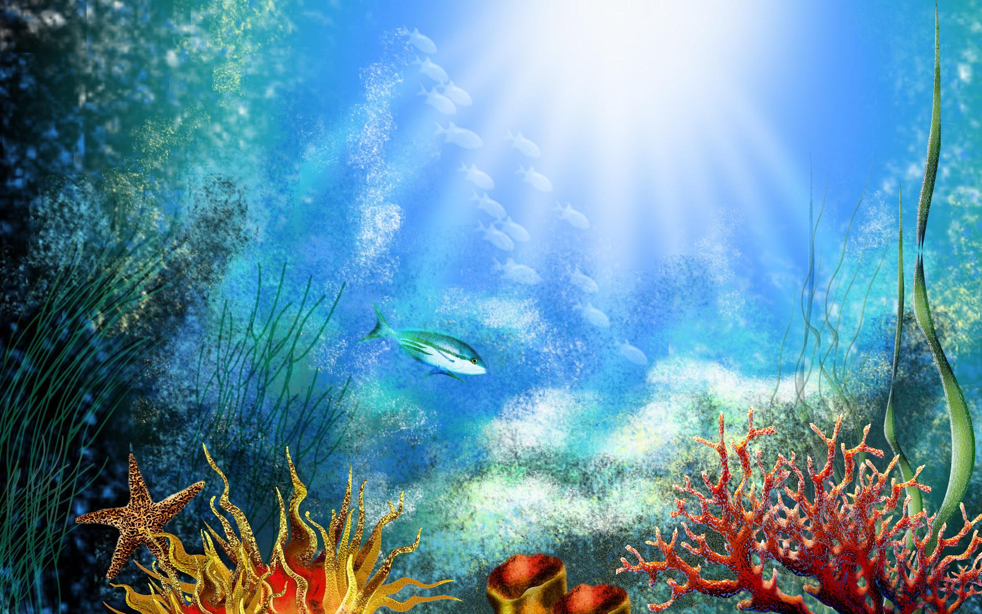 Fish Tank Desktop Backgrounds