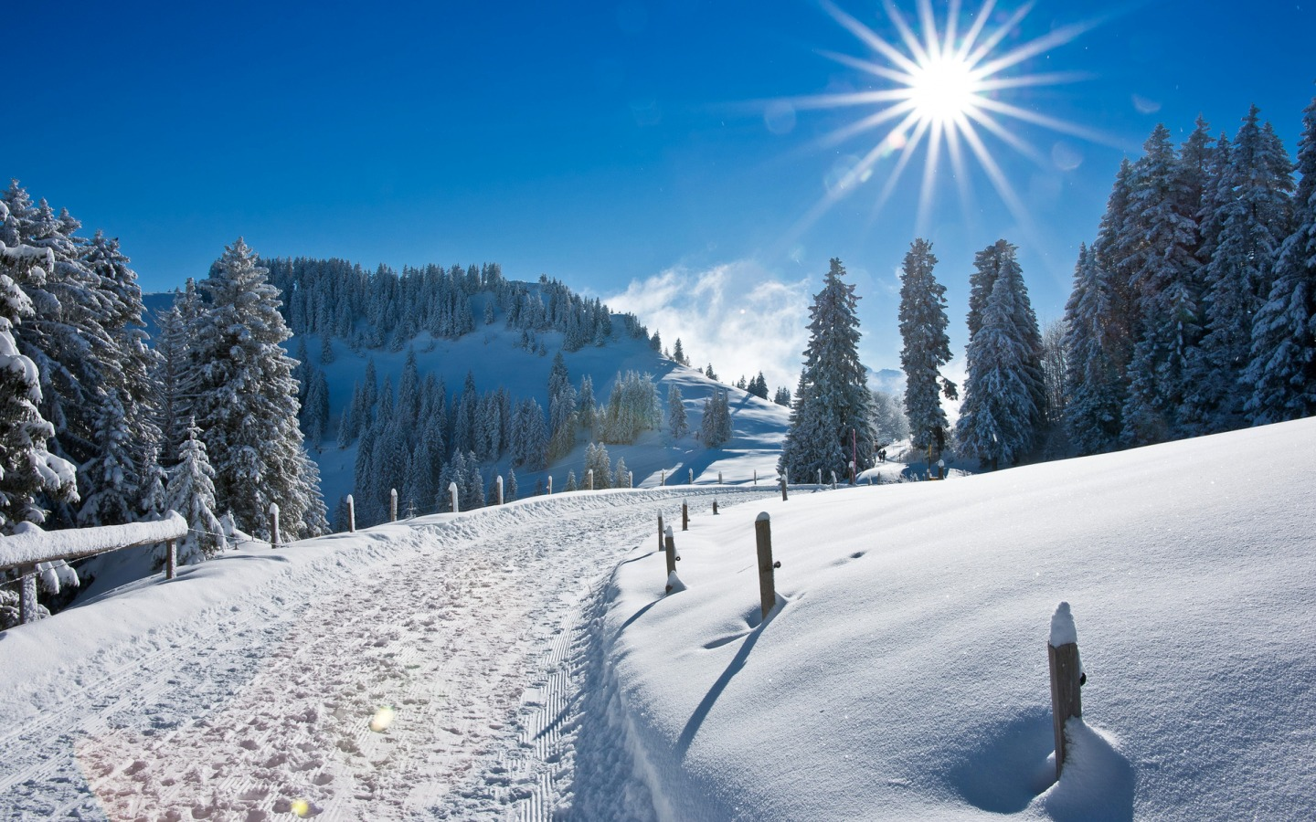 Winter Snow Pictures Free