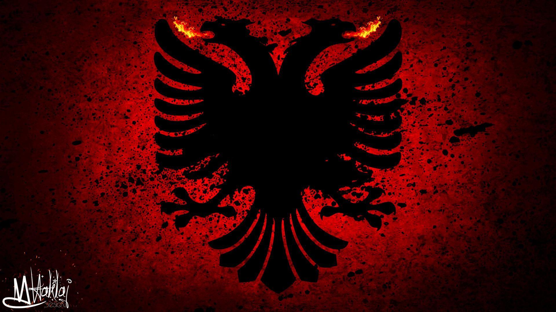 Albanian Flag Eagle