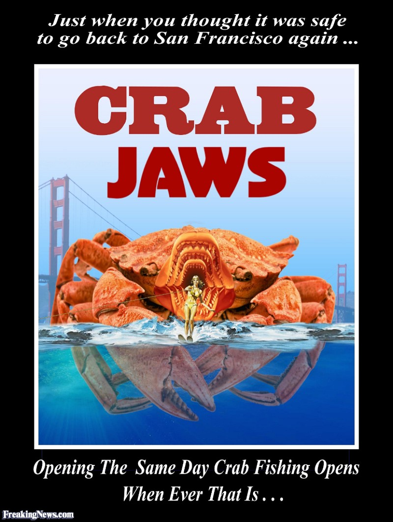 Funny Crab Pictures