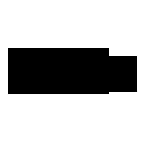 Apple iPad Logo