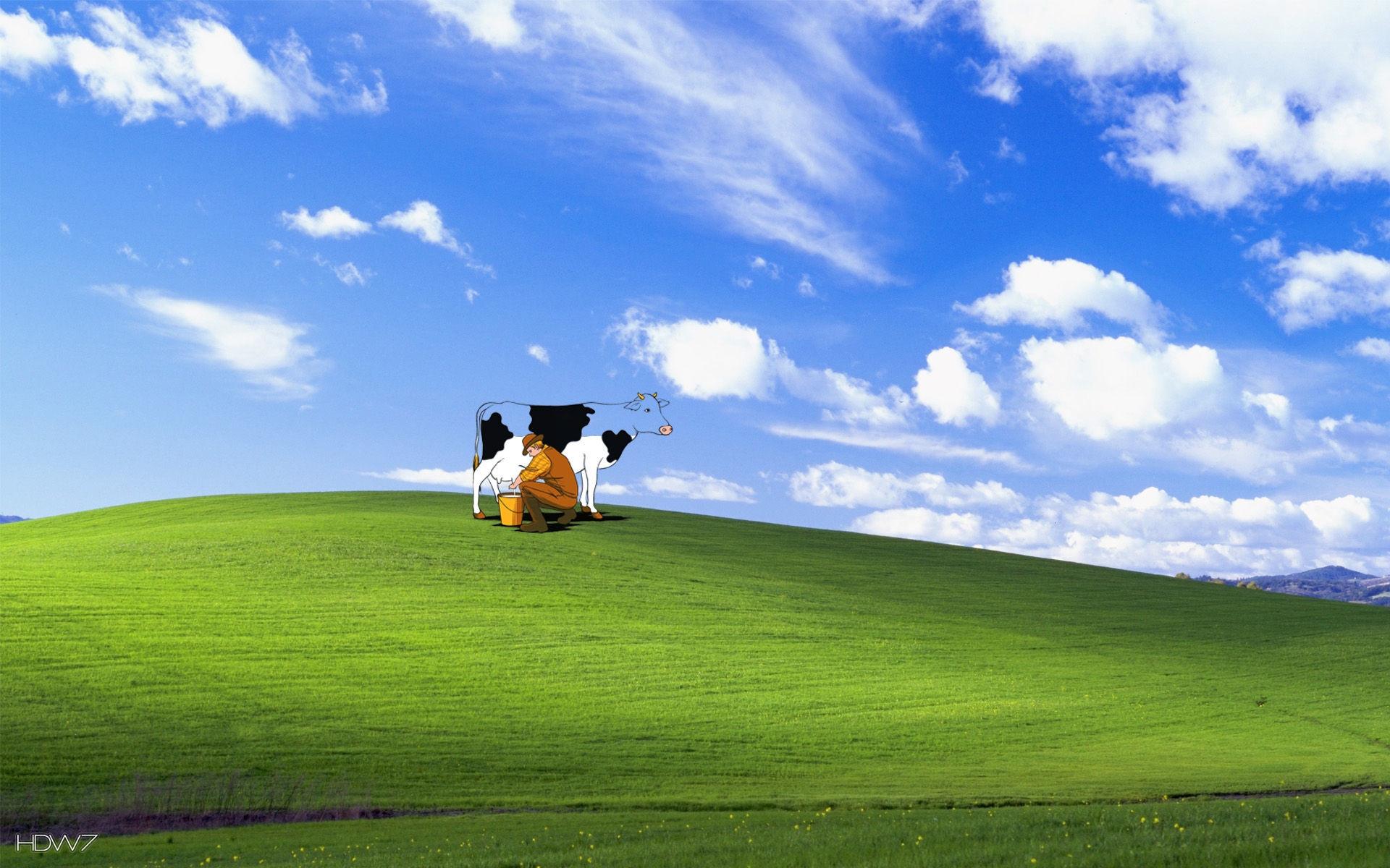 Funny Desktop Wallpaper Windows 7