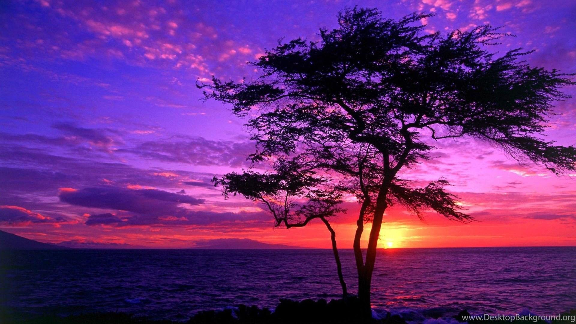 Purple Sunset Desktop