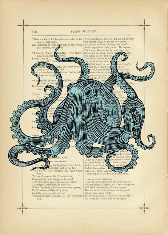 Scary Octopus Drawing