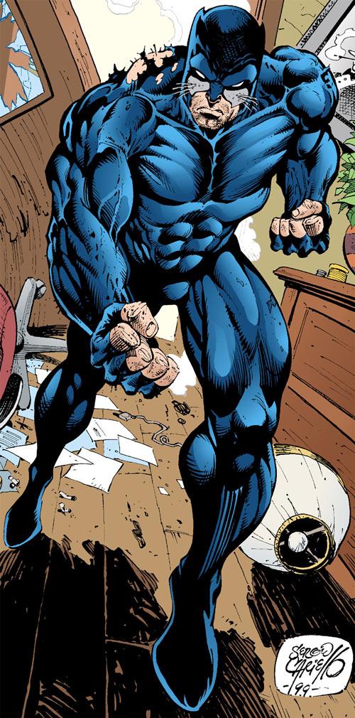 Wildcat Superhero