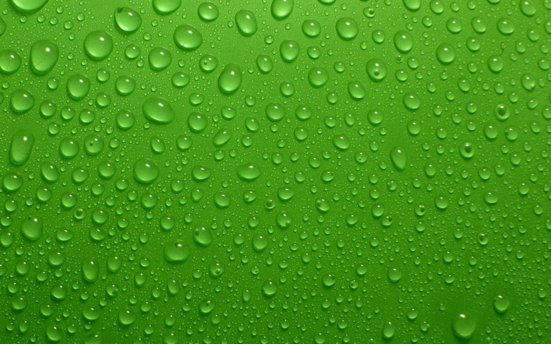 Green Background Wallpaper HD