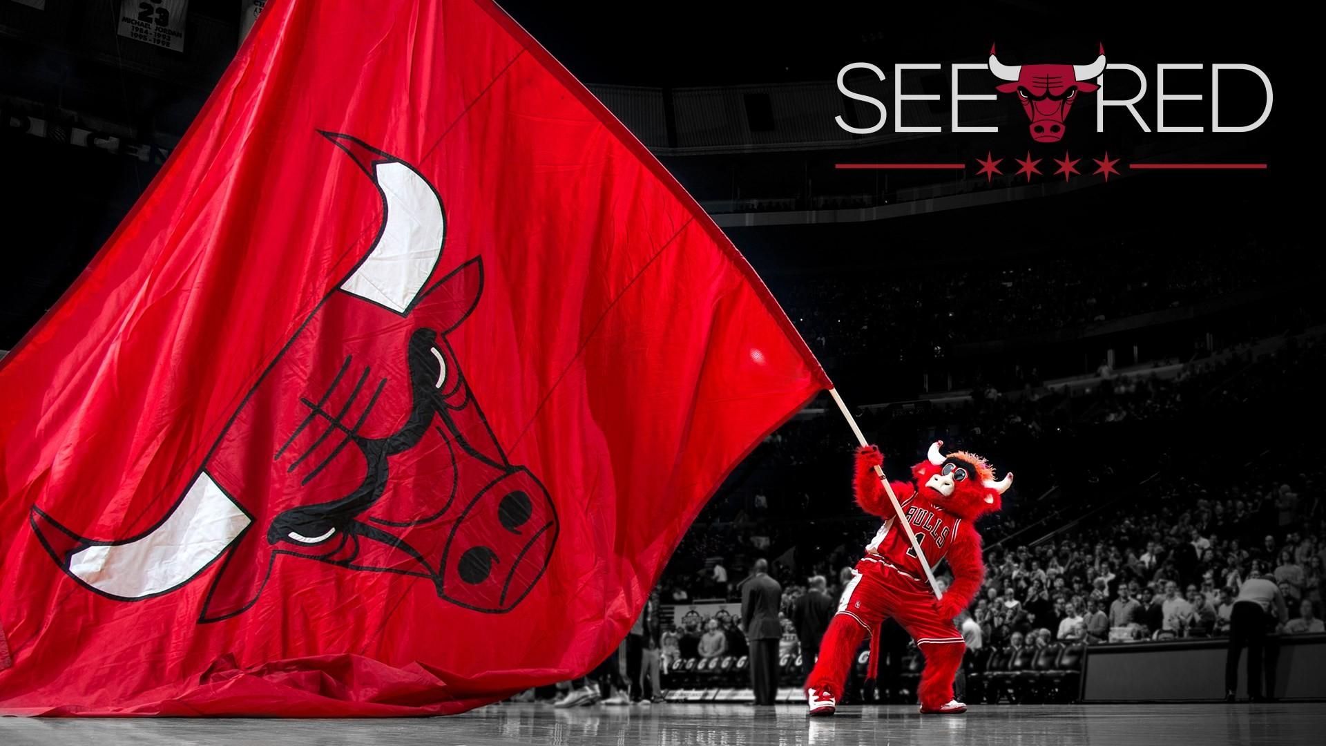 Chicago Bulls Screensaver