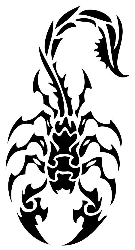 Tribal Scorpion Tattoo Drawings