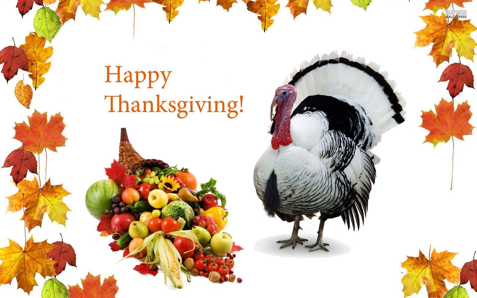 Happy Thanksgiving Computer Wallpaper