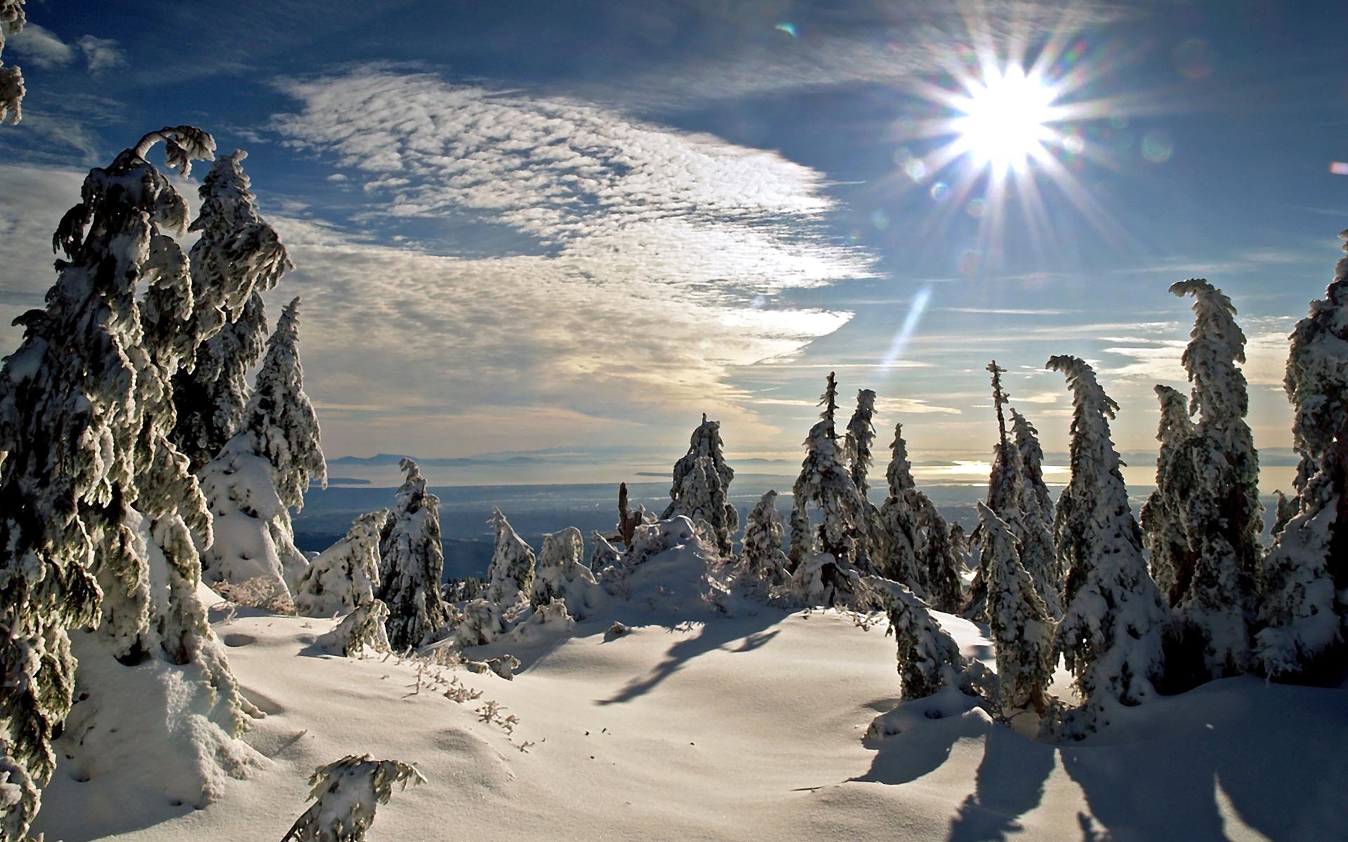 Winter Sun Background