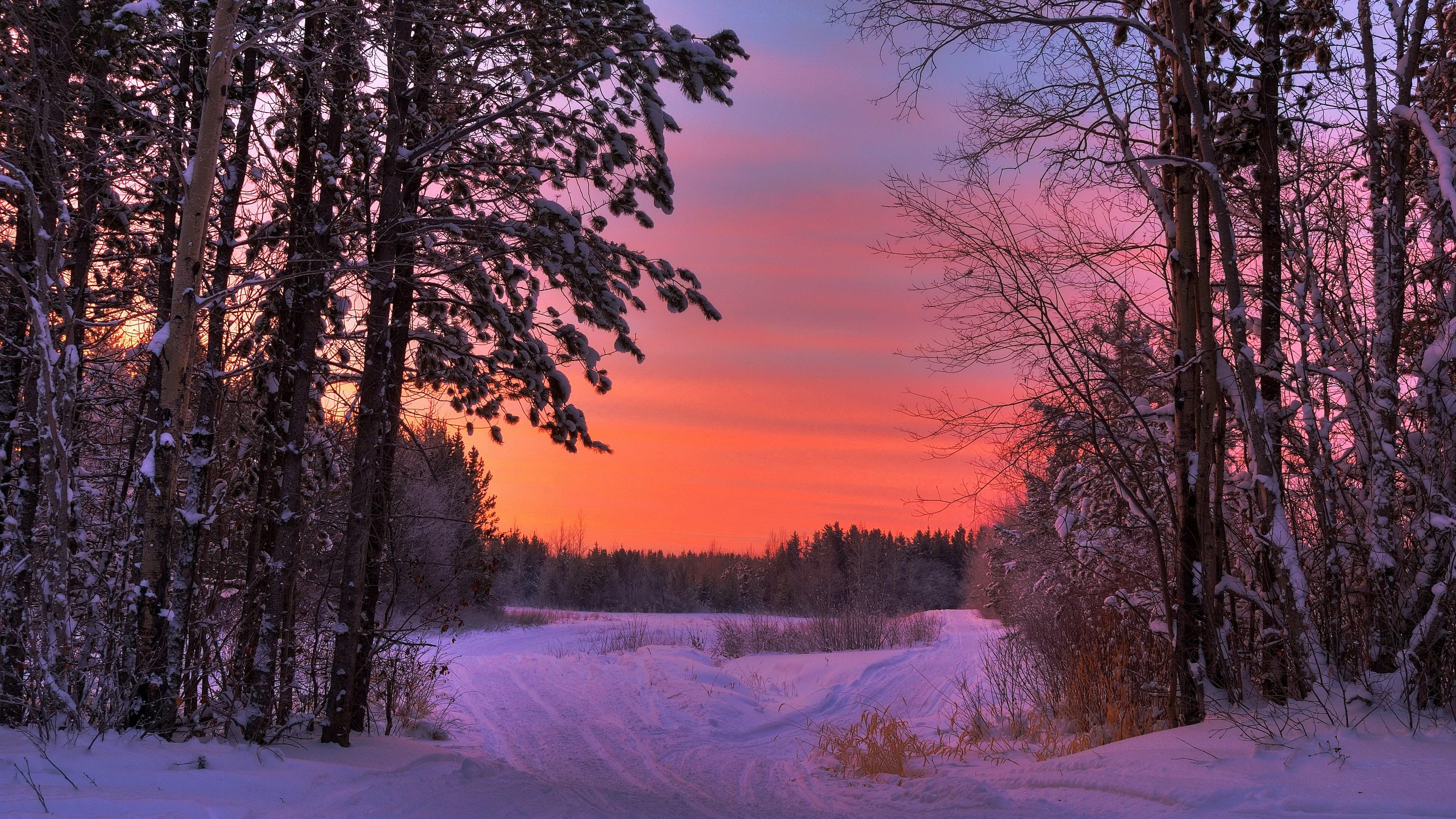 High Resolution Winter Scenes