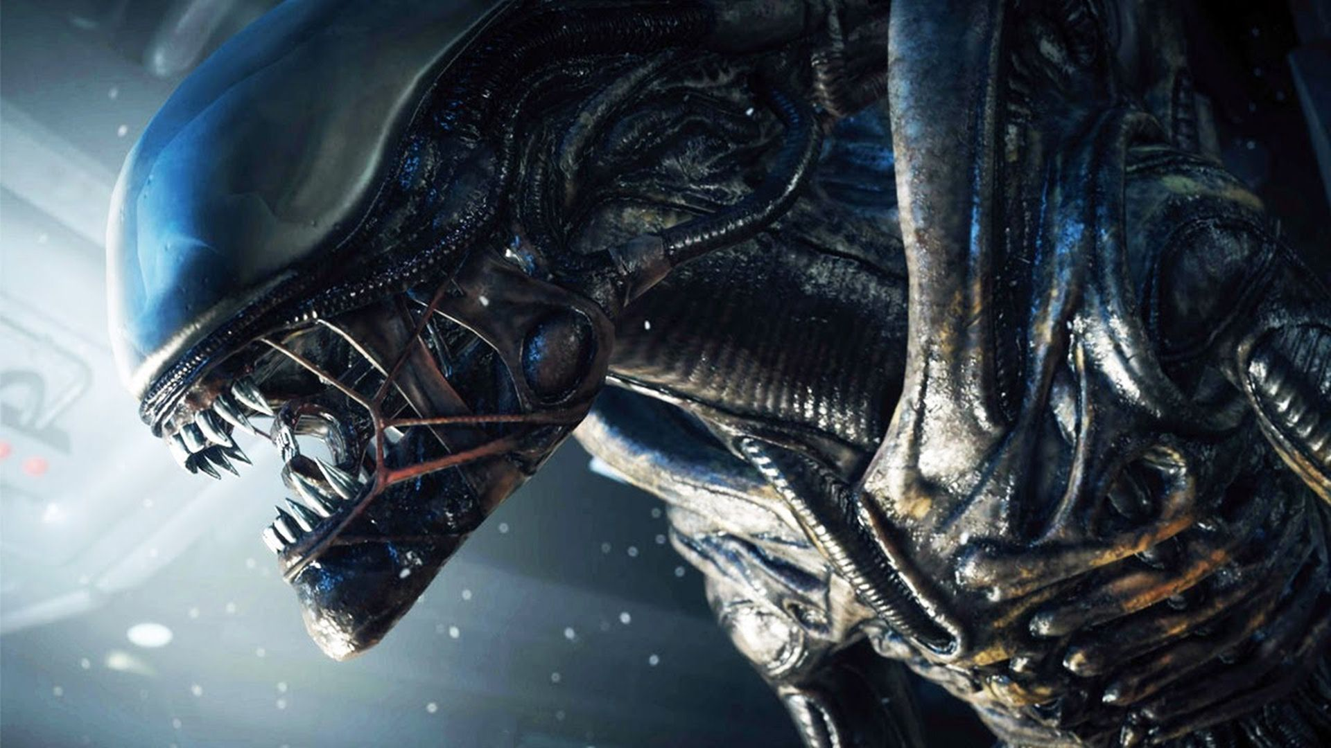 alien wallpaper hd free download 7