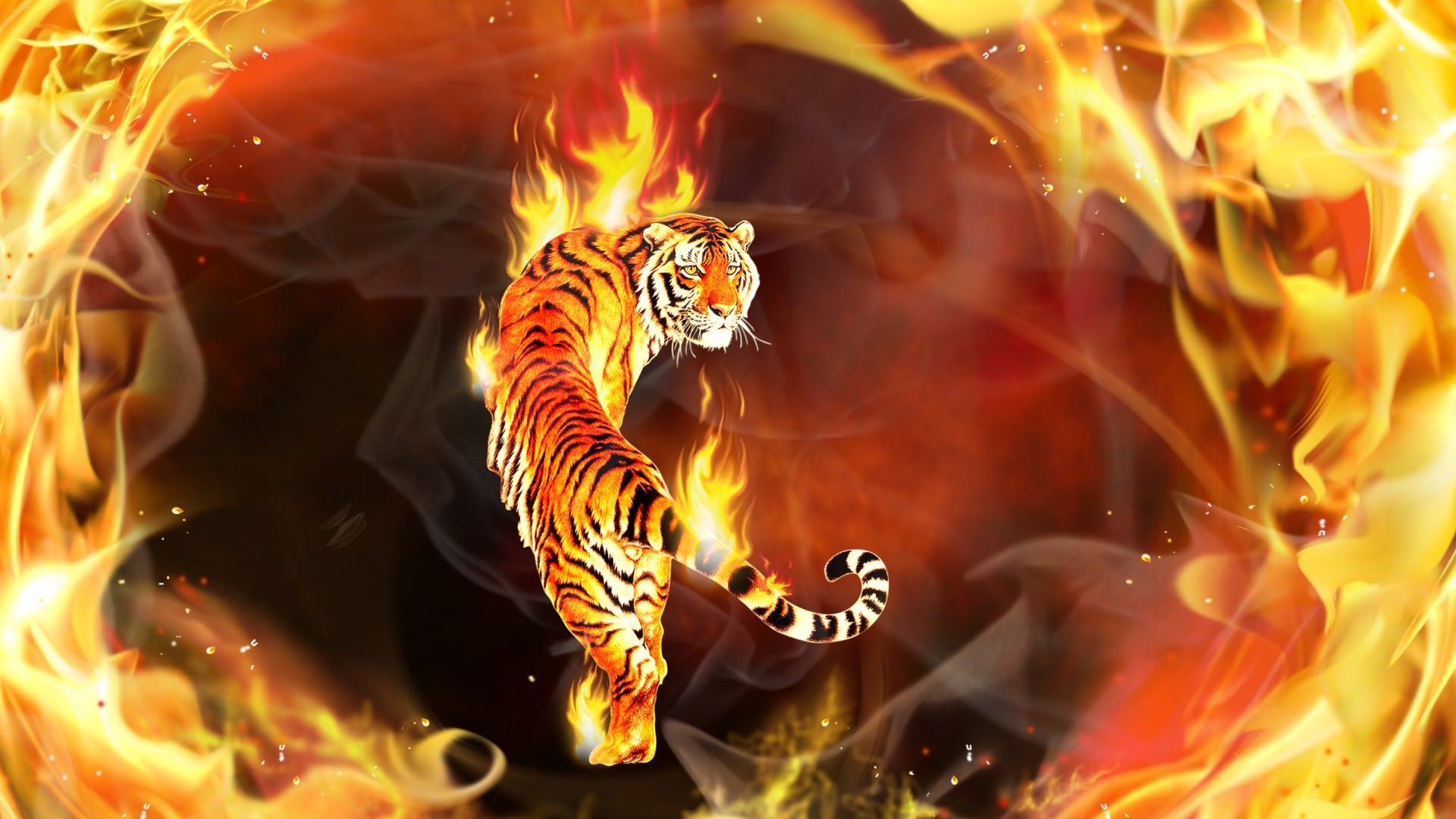 wallpaper.wiki-beautiful-tiger-3d-picture-top-desktop-free-pic
