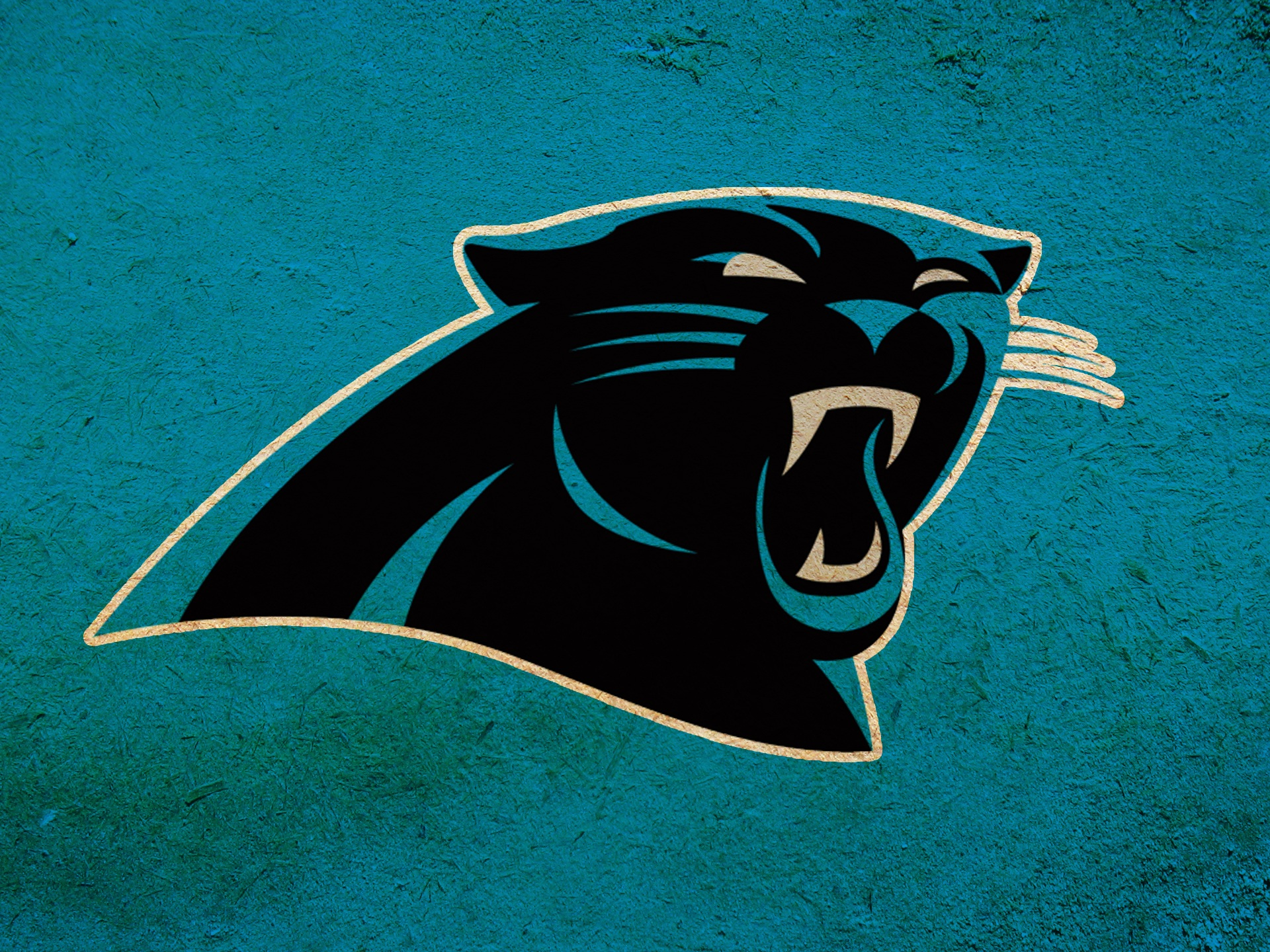 carolina panthers - HD 1365×1024