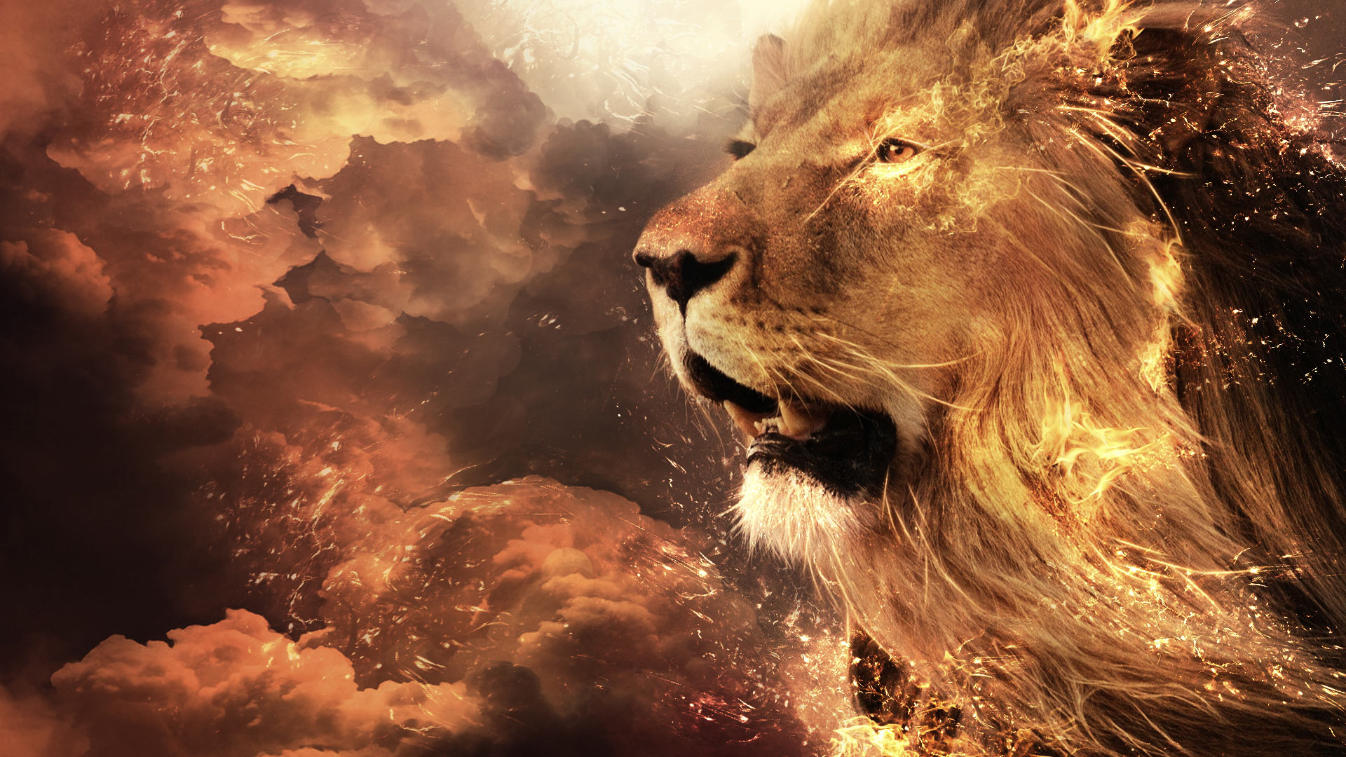 HD Aslan Narnia Background - Page 2 of 3 - wallpaper.wiki for Narnia Aslan Wallpaper  66pct