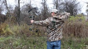 Download Free Bear Archery Image Creative Photos