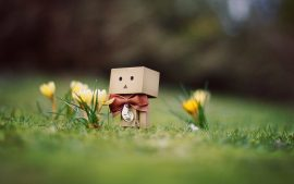 Danbo Wallpaper Download Free