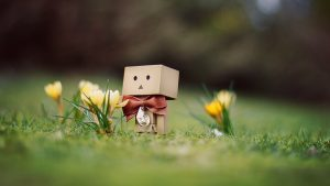 Danbo (ダンボ) Cardboard Cute Character Screen Manga Images From Japan