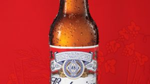 Beer iPhone Wallpaper Images Free in High Definition