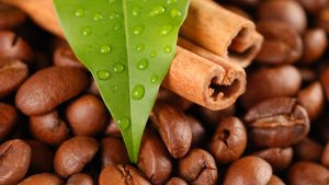 Free Download Coffee Bean Background