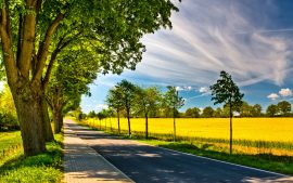 Country Road Wallpaper Download Free