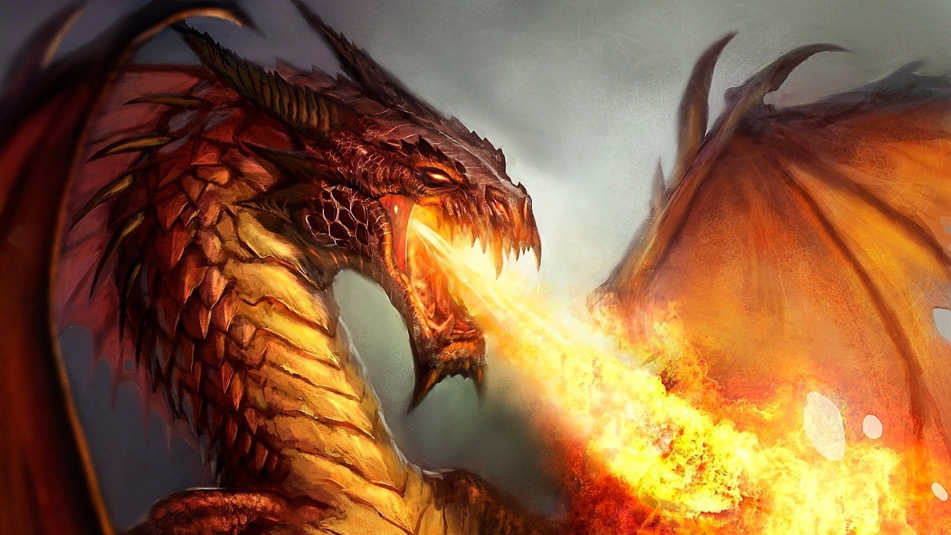 Dragons wallpapers hd wallpaper voltagebd Gallery
