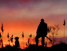 Duck Hunting Wallpapers Free Download