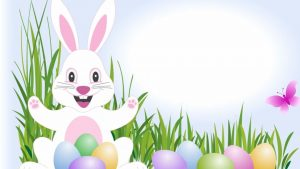 Easter Bunny Happy Fun Wallpapers HD