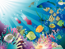 Aquarium Images HD