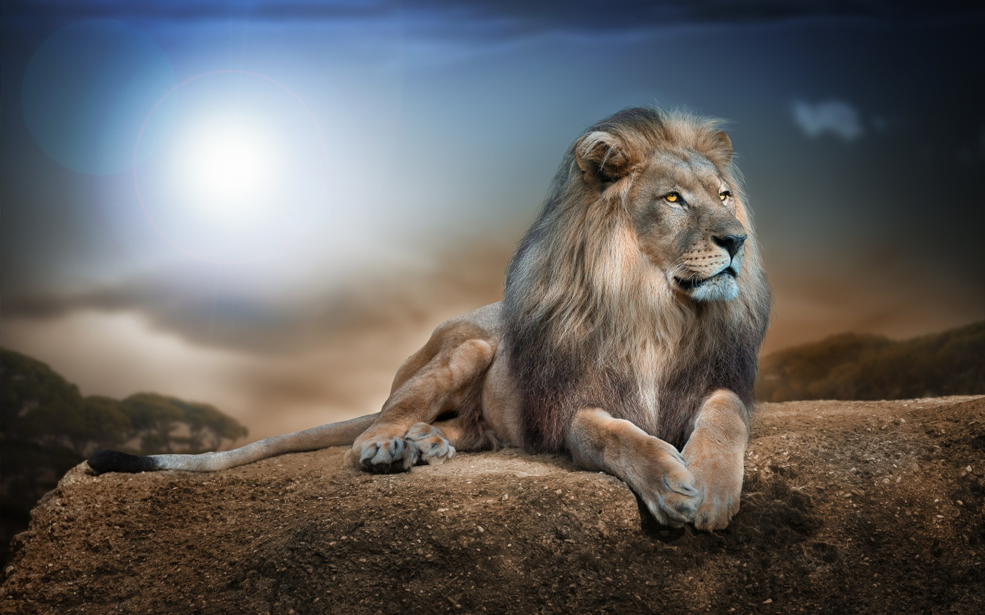 HD Aslan Narnia Background - wallpaper.wiki for Narnia Aslan Wallpaper  166kxo