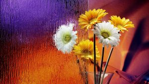 Colorful Flower Wallpaper Free Download