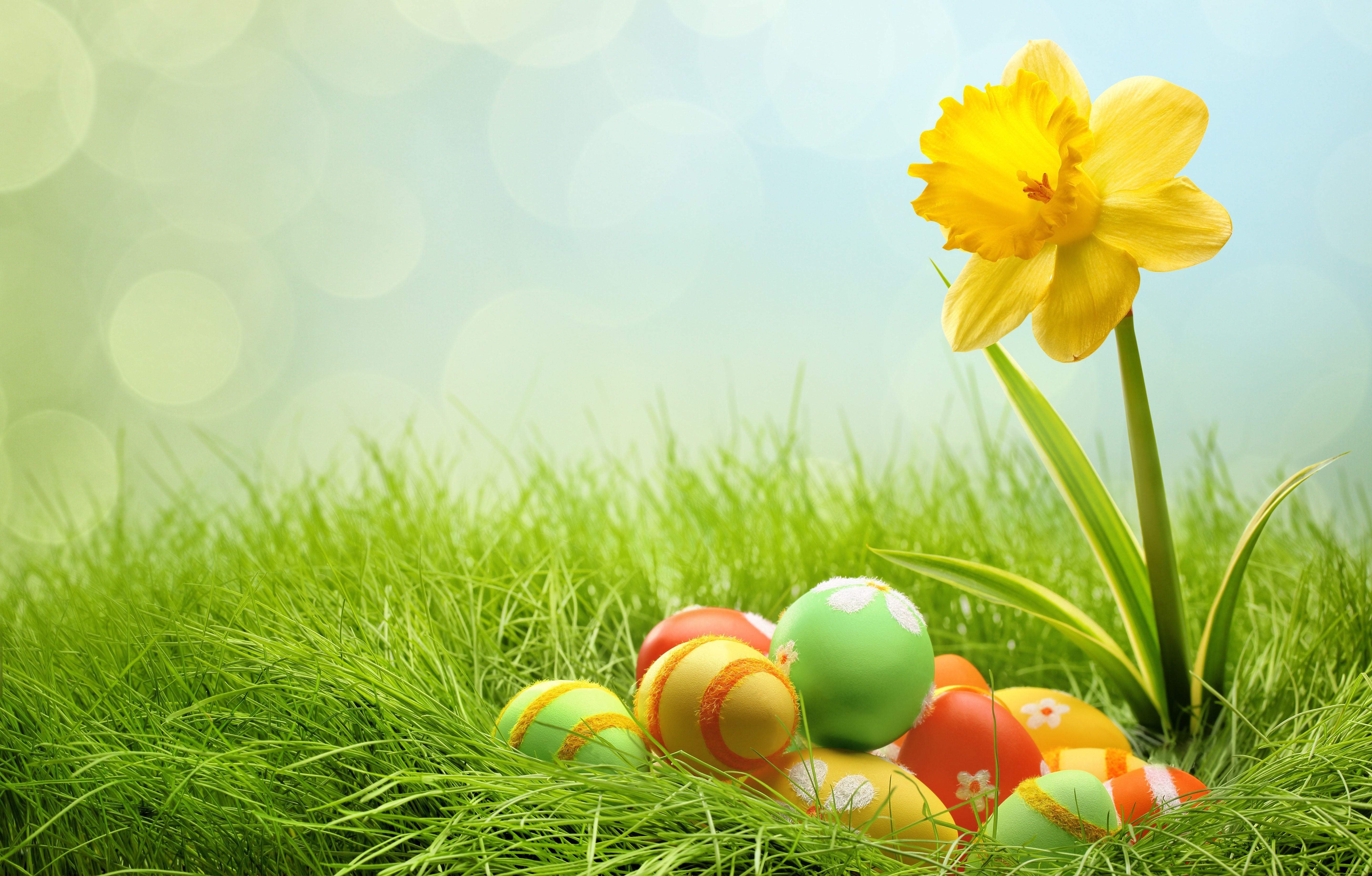 Free Easter Wallpaper HD For Your Desktop 50