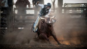 Bull Riding Wallpapers HD