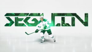 Dallas Stars Professional Ice Hockey Team Pictures