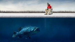 Bass Fishing Background for Desktop