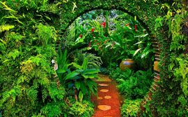 Garden Backgrounds Free Download