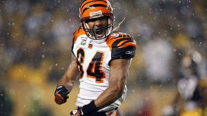Download Free Cincinnati Bengals Backgrounds