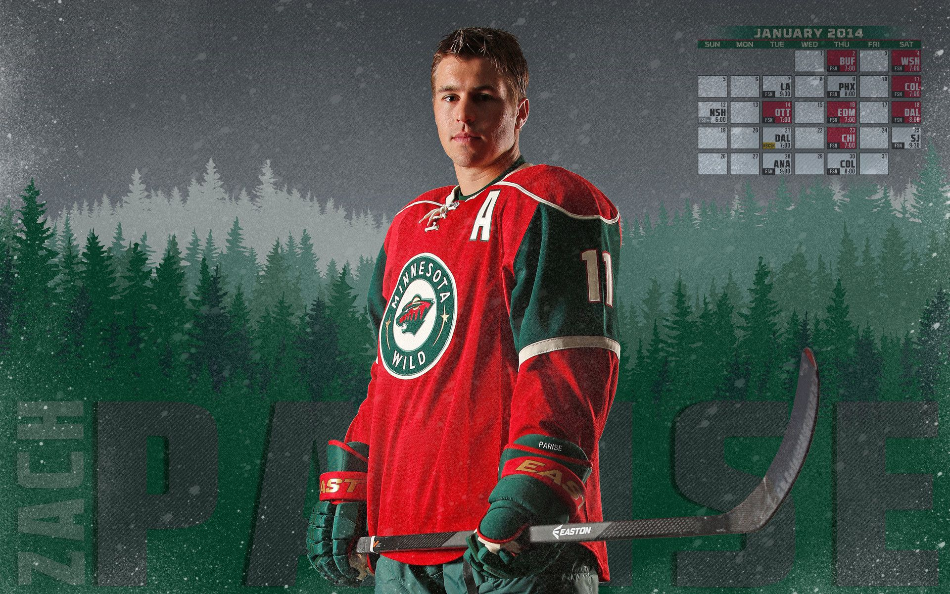 Wallpaperwiki HD Minnesota Wild Background PIC WPD003012