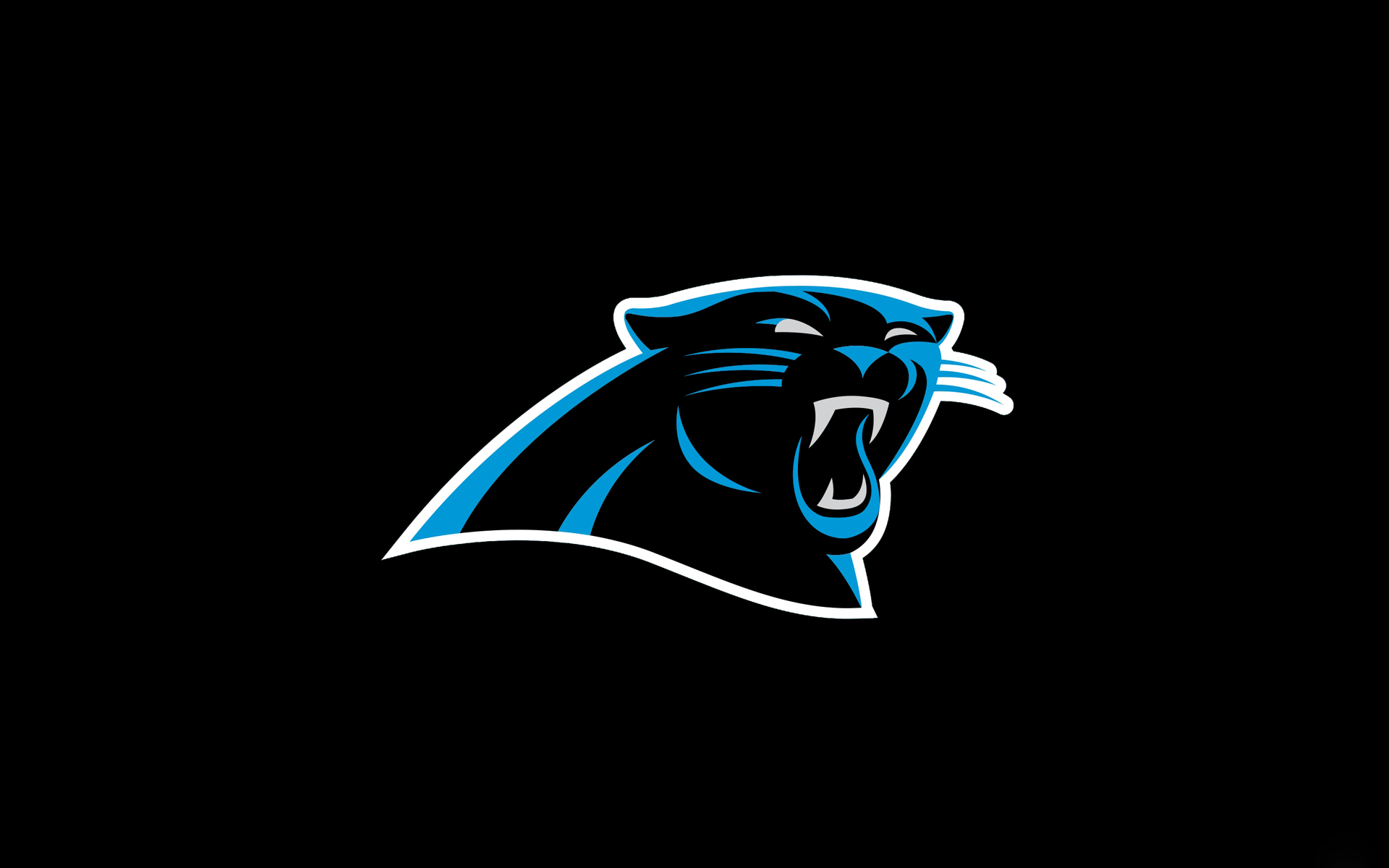 carolina panthers logo wallpaper  Carolina Panthers Logo Wallpaper HD | wallpaper.wiki