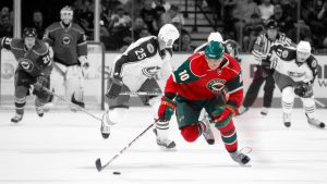 Download Free Minnesota Wild Wallpapers