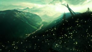 Fireflies Backgrounds Free Download