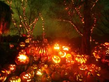 Download Free Pumpkin Halloween Pictures as Backgrounds