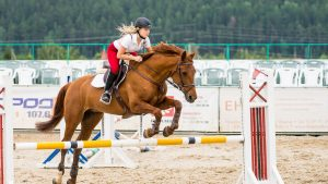 Equestrian Backgrounds Free Download