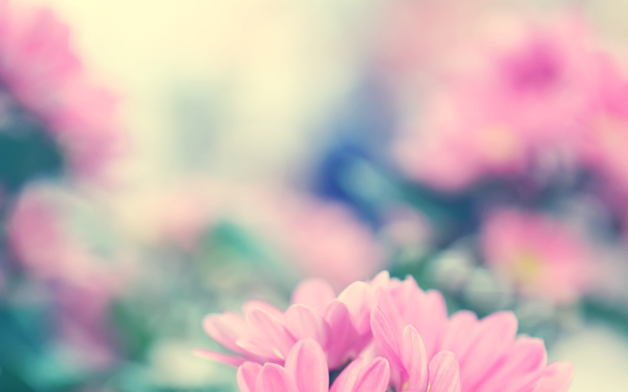 Wallpaper Wiki Spring Flowers Background Free Download Pic Wpb00461
