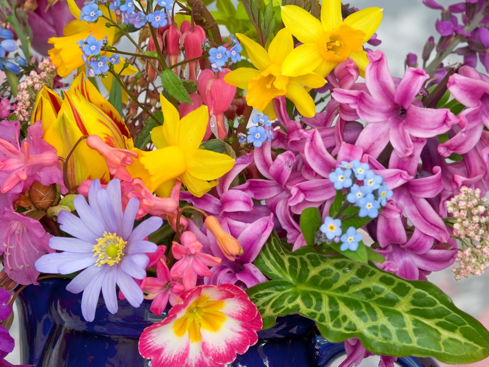 Wallpaper spring flowers background hd pic wpb00422 wallpaper download mightylinksfo