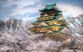 Spring in Japan wallpapers