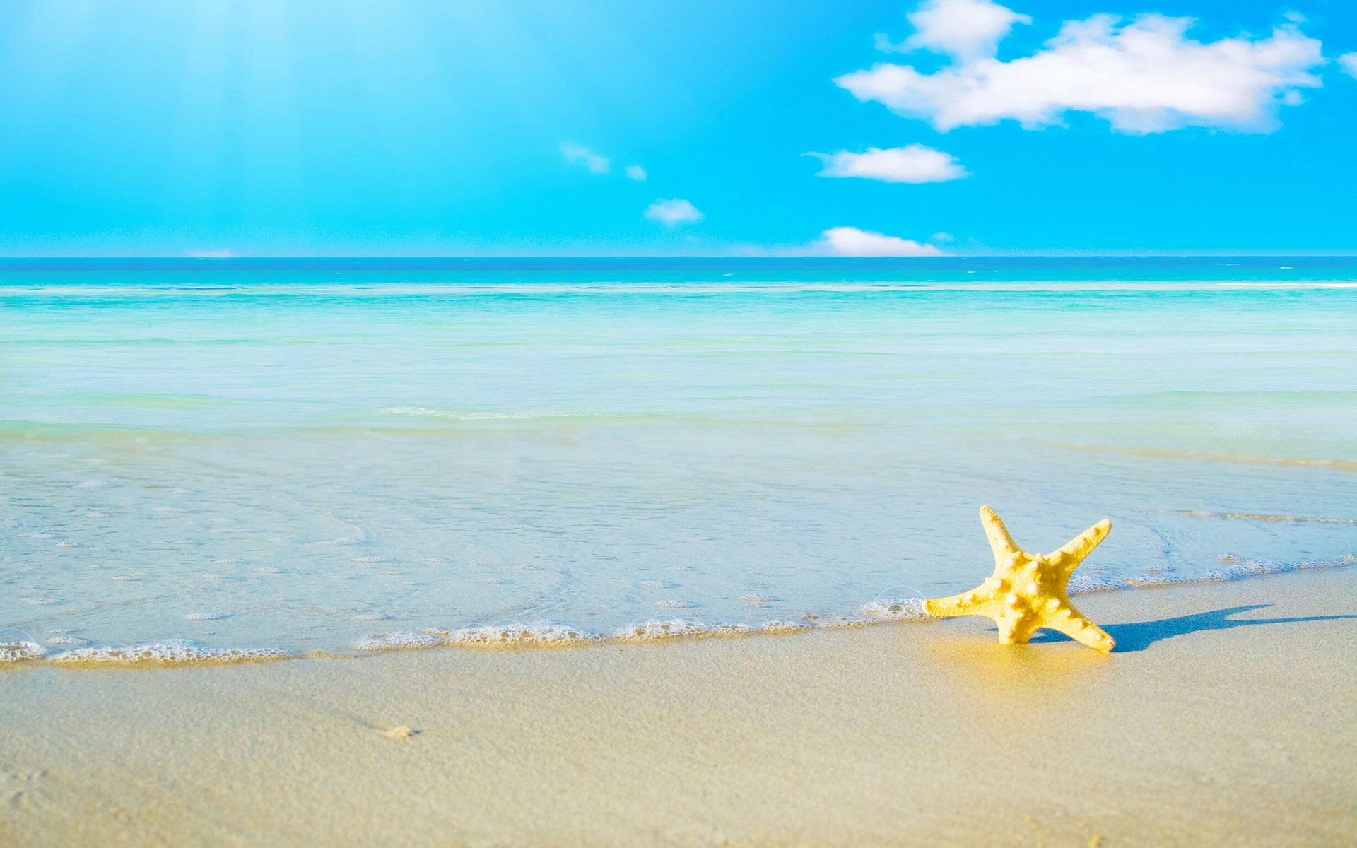 wallpaper.wiki-summer-sea-star-fish-wallpapers-pic-wpb00241