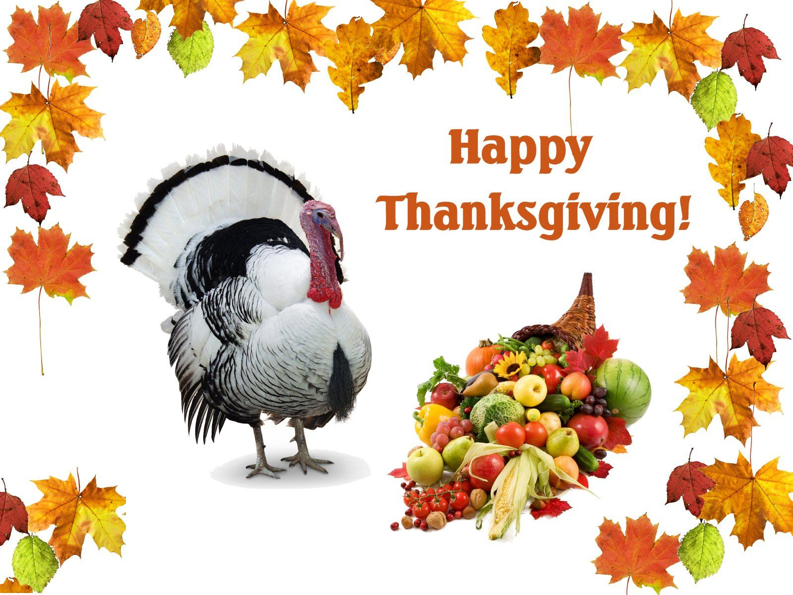 3D Thanksgiving Wallpaper Free Download 3D Thanksgiving HD Backgrounds