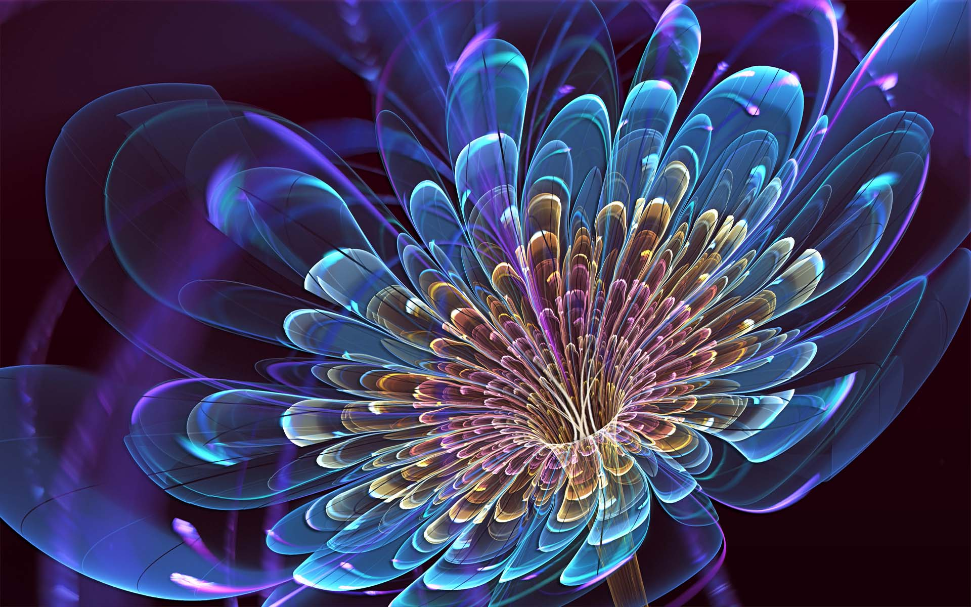 Abstract Flower Wallpaper Download Free Wallpaper Wiki